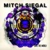 Mitch Siegal